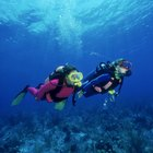 What Should Divers Do for Their Own Safety?