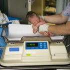 Infant baby been examined on the balance