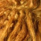 Como prevenir a caspa em dreads