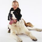 Big Dogs Who Are Good with Kids