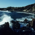 Ocean coast , South Africa