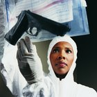Where to Go to Be a Forensic Technician?
