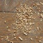 ¿Qué puedo utilizar para acidificar el suelo de forma casera?