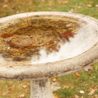 How to fix a broken concrete birdbath