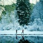 Raquetas de nieve y yurtas en Yosemite