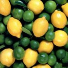 Lemons and limes are both members of the citrus fruit group.