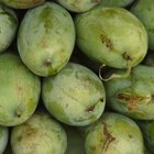 El efecto del carburo en la maduración de las frutas