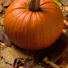 Low Fat Ideas for Pumpkin Puree