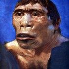 Actividades del hombre del Paleolítico