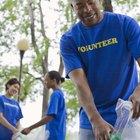 Ejemplo de carta para solicitar un servicio voluntario