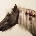 Como deixar a cauda e a crina de cavalos mais longas