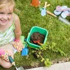 Instrucciones para niños: cómo plantar una semilla