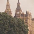 Características de una forma de gobierno parlamentario