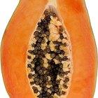 Cómo plantar y hacer crecer un árbol de papayas