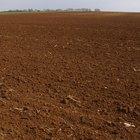 O que é a saturação por bases nos solos?