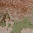 Las desventajas del papel tapiz auto-adhesivo