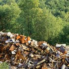 Landfill effects on plants and animals