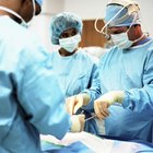 Majors & Minors to Become a Surgeon