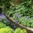 How to build a rill water garden