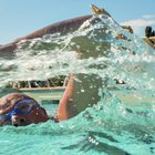 Does Swimming Make Bigger Back Muscles?