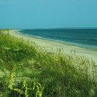 Sitios para acambar con tu RV frente al mar en Carolina del Norte