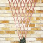 How to hang a trellis on a brick wall