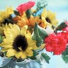 ¿Qué flores pueden juntarse con los girasoles en un ramo?