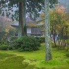 10 ejemplos increíbles de arquitectura verde