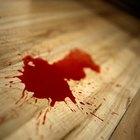 Salary of a Blood Splatter Analyst