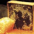 Benefícios do favo de mel à saúde
