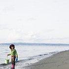 Campings en ​​Ocean Shores, Washington