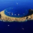 Los mejores lugares para bucear en Hawai