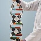Clinical Geneticist Education & Training