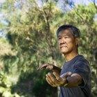 Basic Kung-Fu Training Techniques