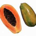 Health Benefits of Papayas