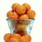 Como extrair DNA de laranjas