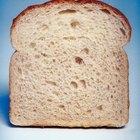 Com que velocidade fungos crescem no pão?