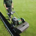 When is the last time to cut grass before winter?