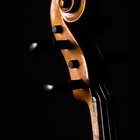What Is the Difference in Cello Bow Sizes?
