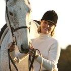Como promover o crescimento de pelos sobre cicatrizes em cavalos