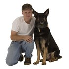 How to Trim Hair on Feet Between Pads on German Shepherds