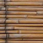 Cómo limpiar el moho del bambú