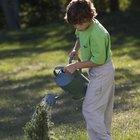 Cómo mezclar cal agrícola en el suelo