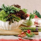 Plantas usadas en ensaladas