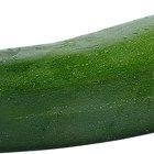 Cómo marinar y asar zucchinis