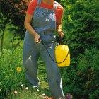 Efectos de los fertilizantes y pesticidas