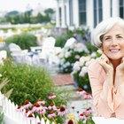 Os idosos devem consumir o Ensure para uma melhor nutrição?