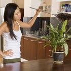 Cómo limpiar un plumero tú mismo