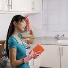 Cómo limpiar luego de fumigar pulgas