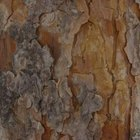 Pine tree bark makes soil more acidic.